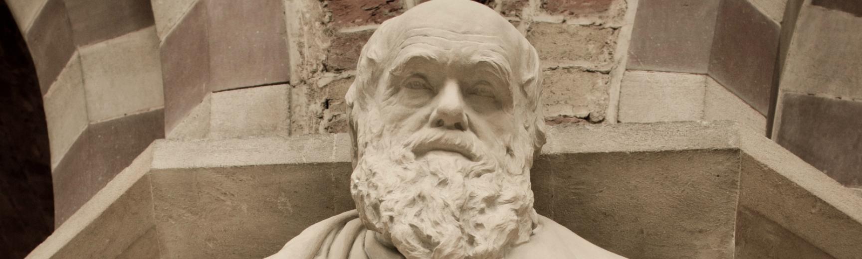 Darwin's statue