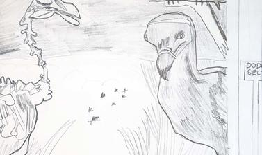 dodo by sahana highly commended 8 11 year old category