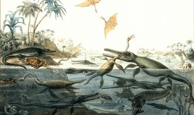 <i>Duria Antiquior - A more Ancient Dorset</i> painted by Henry De la Beche in 1830, is the first artistic representation of a scene of prehistoric life based on evidence from fossil remains, today known as 'palaeoart'.