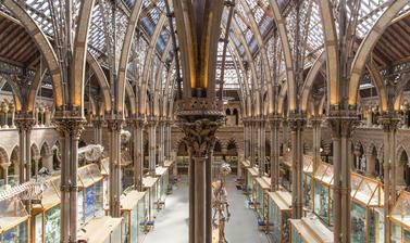Image of Museum interior