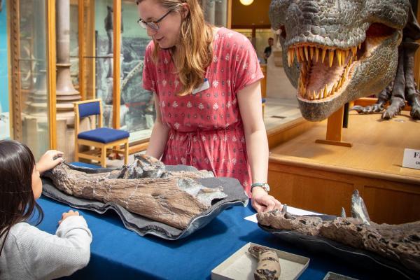 Palaeontologist explaining fossils