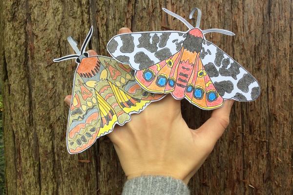 moth finger puppets