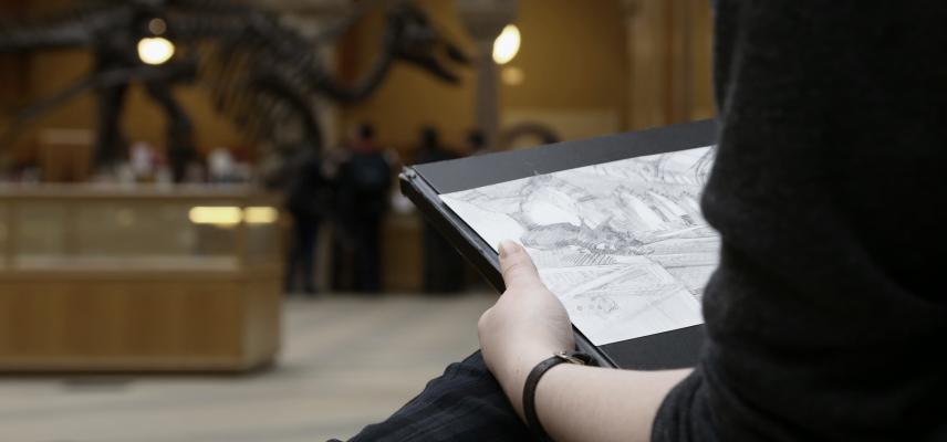 2019 artist in residence fiona oakley drawing in museum dino