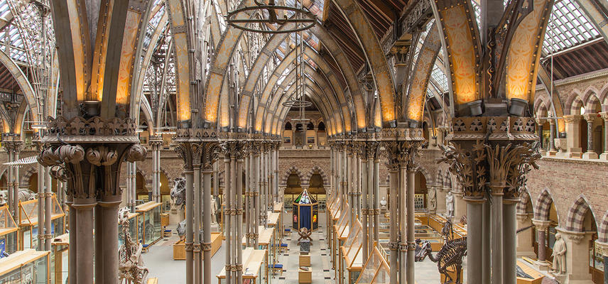 Oxford University Museum of Natural History interior architecture