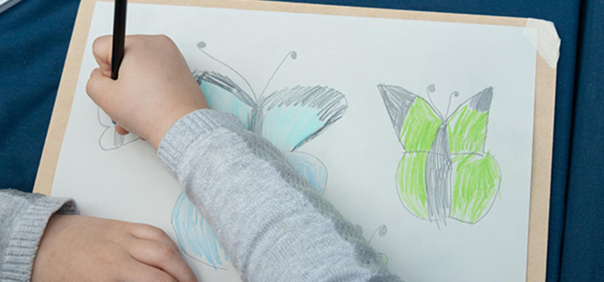 rsyoung artist drawing butterflies at the museum