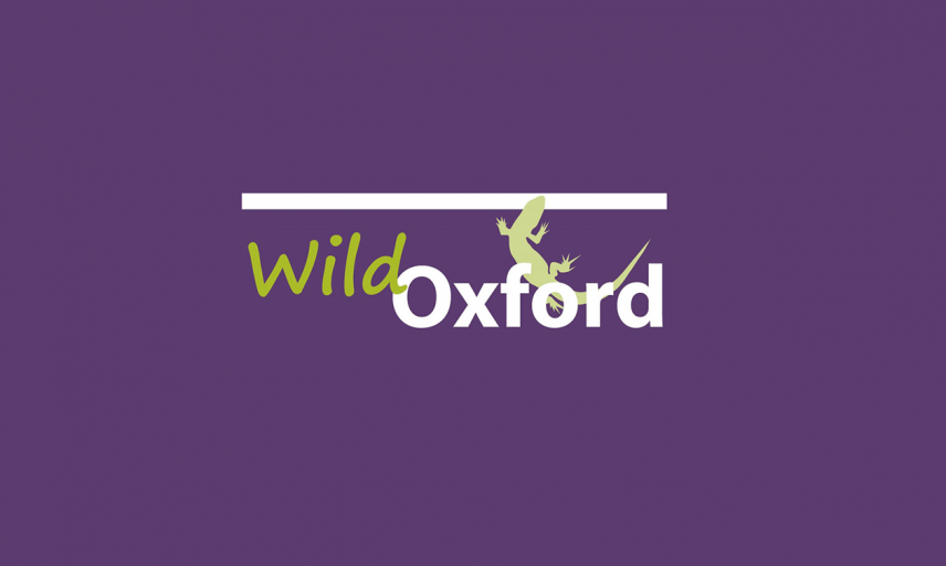 wild oxford logo2