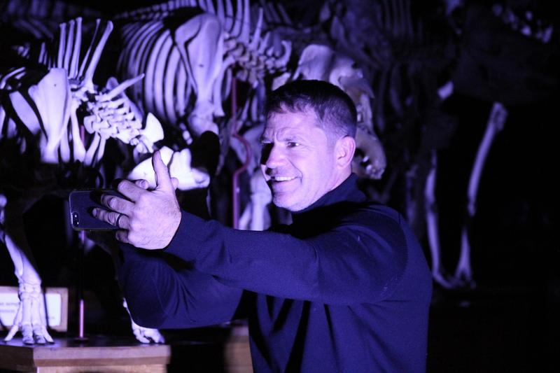 A man bathed standing in front of a row of mammal skeletons, bathed purple-blue light and looking into a mobile phone